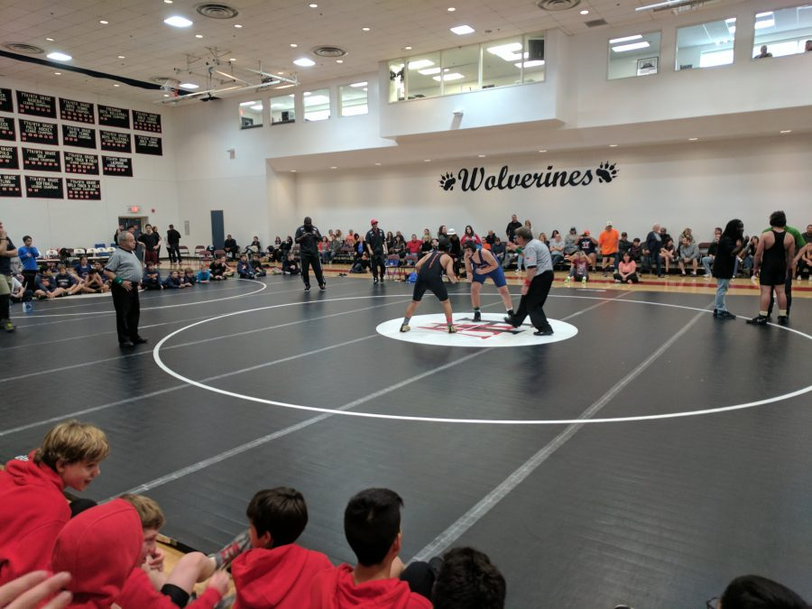 Wrestling fights to the end