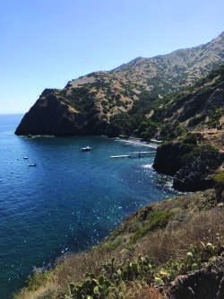 Eighth graders travel to Catalina